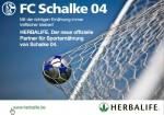Schalke 04 - Topteam Deutschland